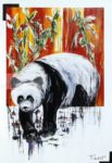 Panda cherchant a sortir de son cadre
